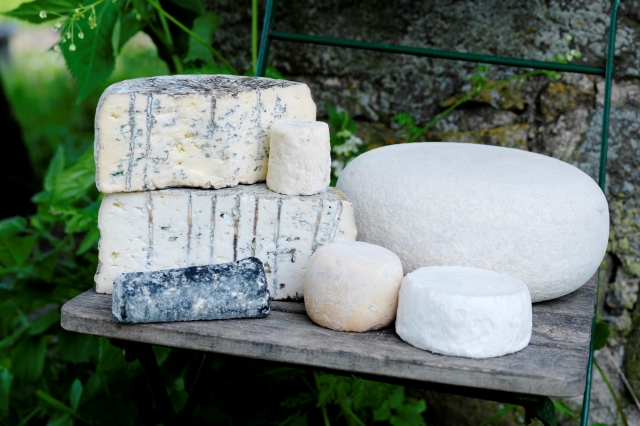 Cheese from Scania. Cruise to Scandinavia – Hit The Road Travel