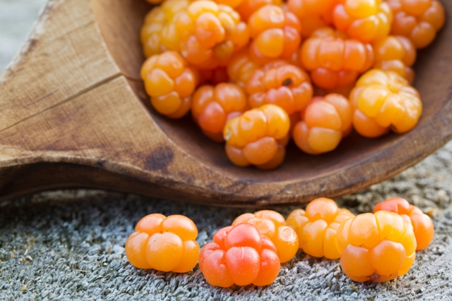 Cloudberries from Finland. School trips to Finland – Hit The Road Travel