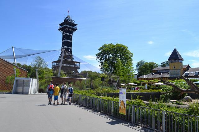 Zoo wKopenhadze. Wycieczki szkolne zagraniczne – Hit The Road Travel