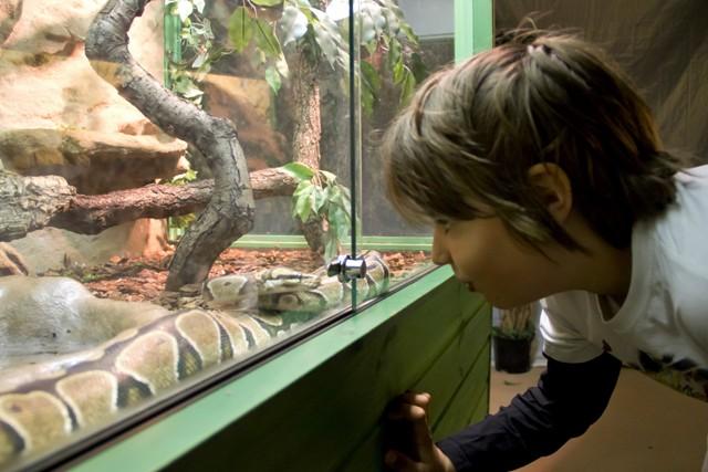 Zoo wHelsinkach. Wycieczka doDoliny Muminków – Hit The Road Travel