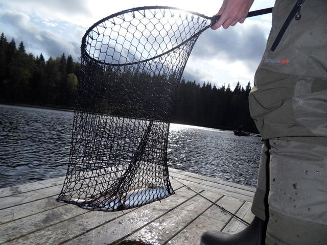 Na ryby doSzwecji! Wyprawy wędkarskie doSzwecji – Hit The Road Travel