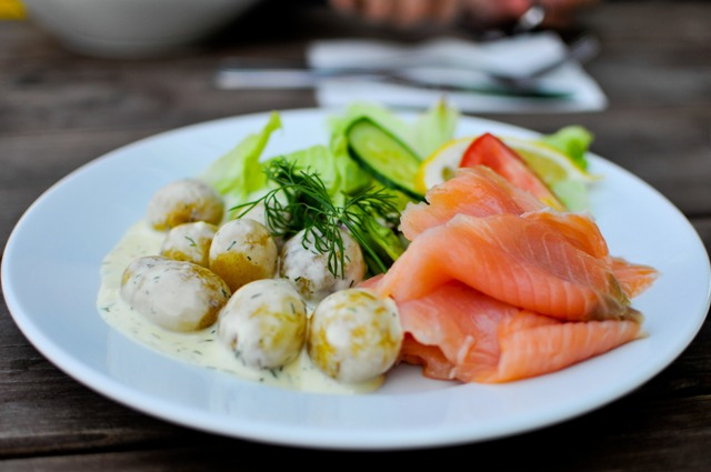 Salmon dishes. Trip to Stockholm in the footsteps of ABBA, music tours