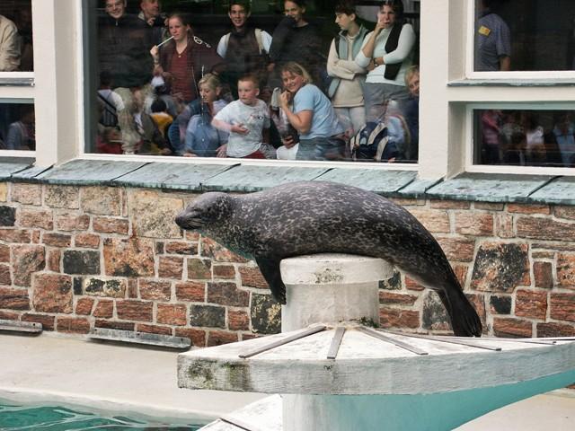 Aquarium in Bergen. Norway tours – Hit The Road Travel