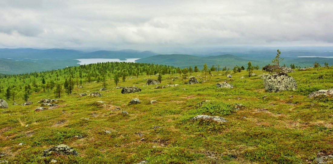 Otsamotunturi plateau, Finland. Trips to Lapland, tours of Finnish Lapland – Hit The Road Travel