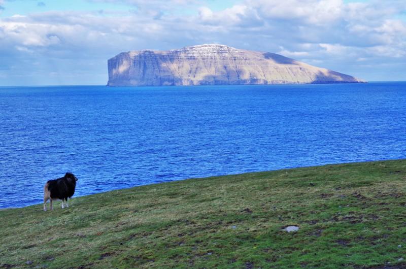 Wyspa Fugloy, widok zwyspy Viðoy. Wyspy Owcze - Hit The Road Travel