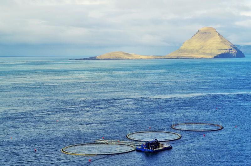 Wyspa Koltur. Wyspy Owcze - Hit The Road Travel